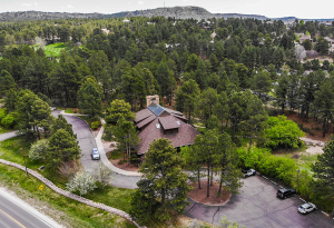 House Rooftop Aerial View Surrounded with Trees