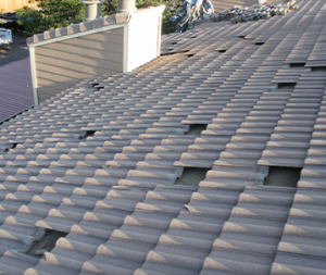 Roof with Few Plates Missing