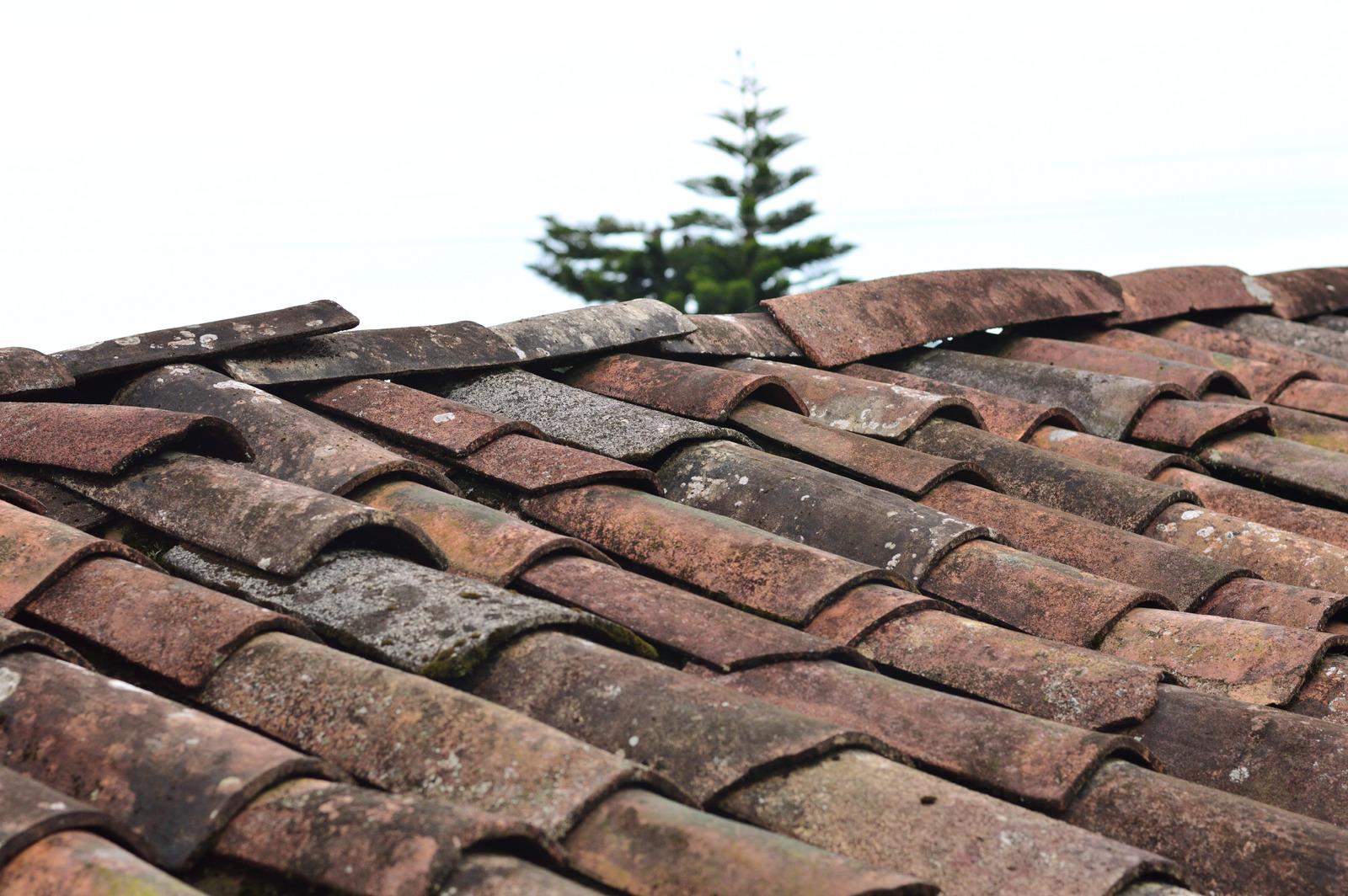roof asphalt shingles